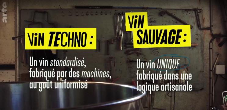 Captura-vin techno vs sauvage